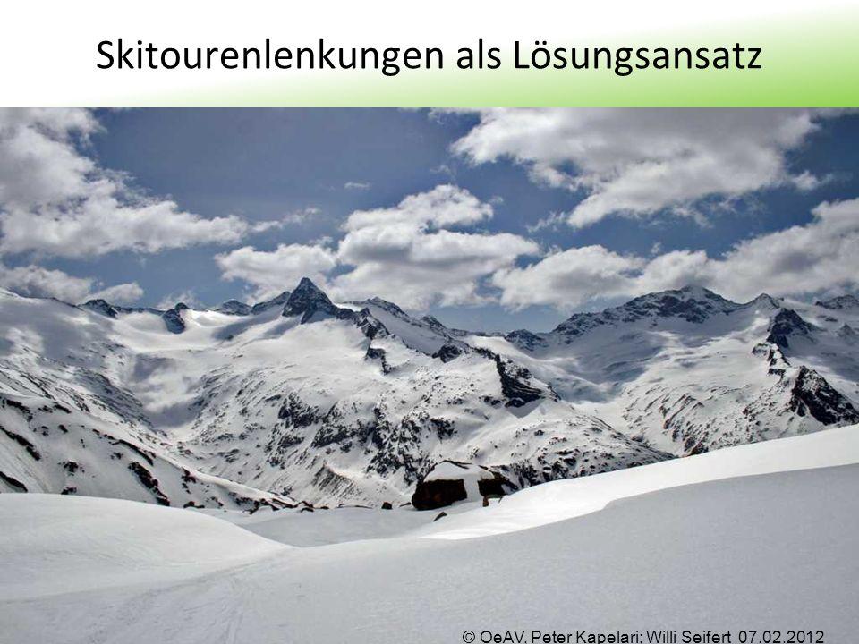 Skitourenlenkungen als Lösungsansatz
