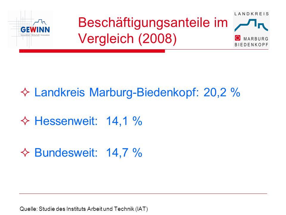 Beschäftigungsanteile im Vergleich (2008)