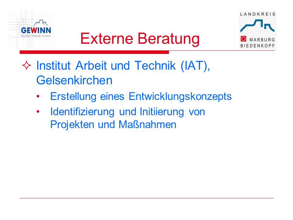 Externe Beratung Institut Arbeit und Technik (IAT), Gelsenkirchen