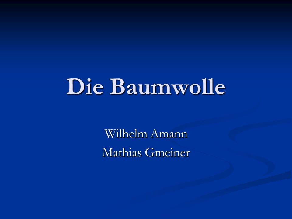 Wilhelm Amann Mathias Gmeiner