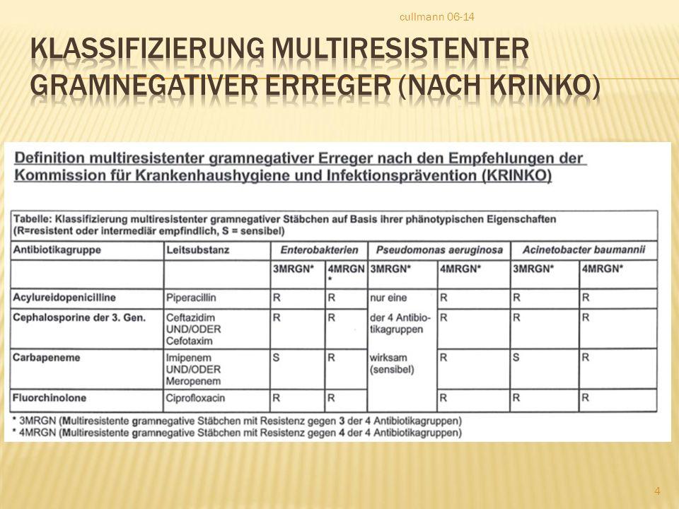 Klassifizierung multiresistenter Gramnegativer Erreger (nach KRINKO)