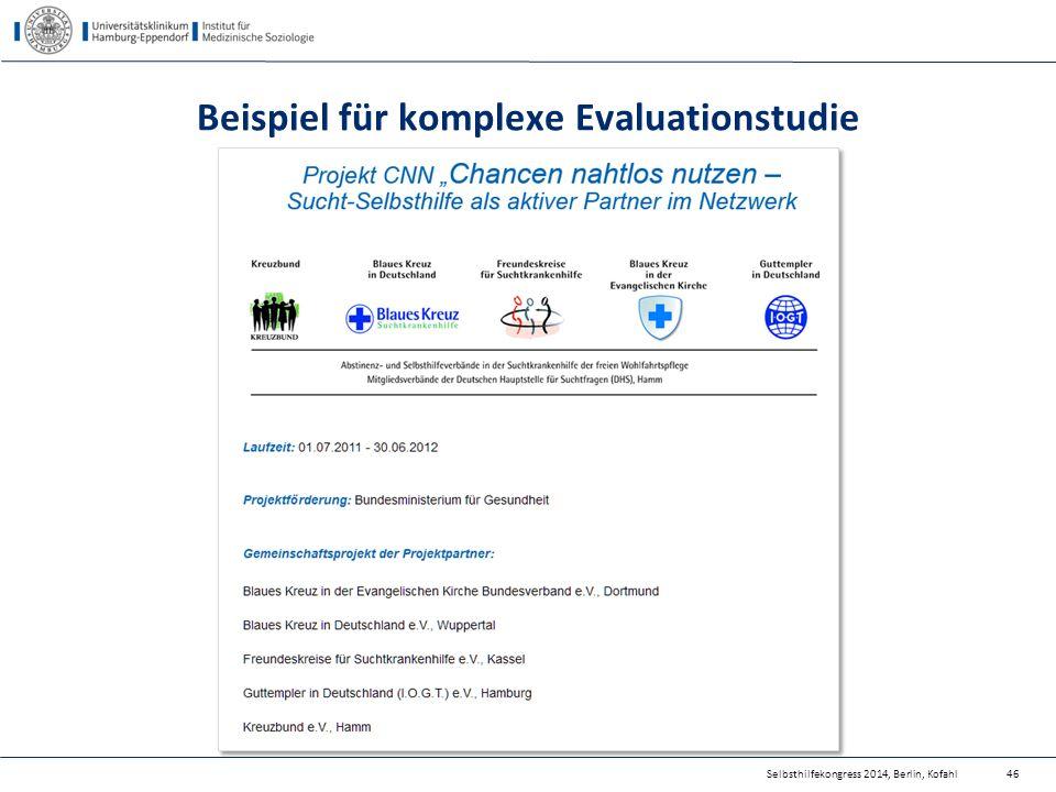 Beispiel für komplexe Evaluationstudie