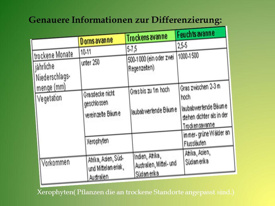 Genauere Informationen zur Differenzierung: