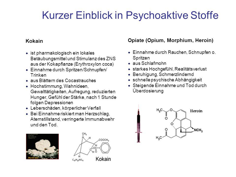 Kurzer Einblick in Psychoaktive Stoffe