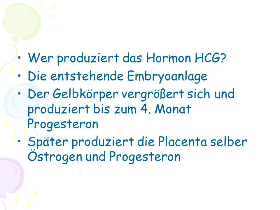 Wer produziert das Hormon HCG