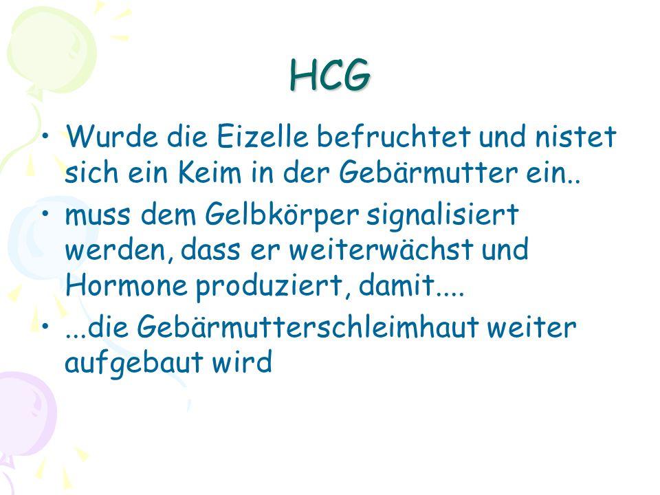 HCG Wurde die Eizelle befruchtet und nistet sich ein Keim in der Gebärmutter ein..