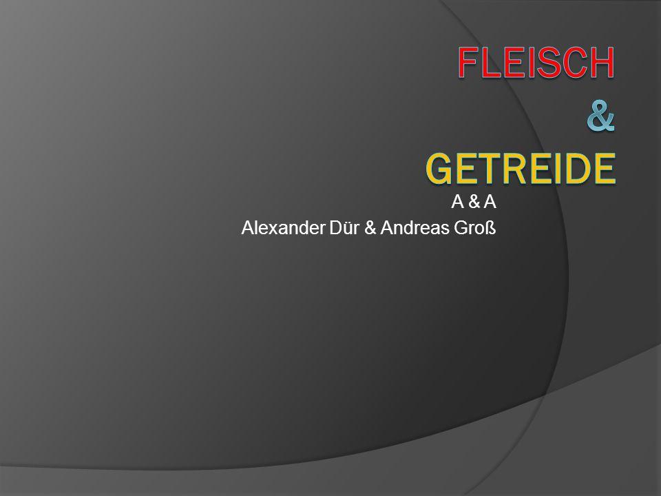 A & A Alexander Dür & Andreas Groß