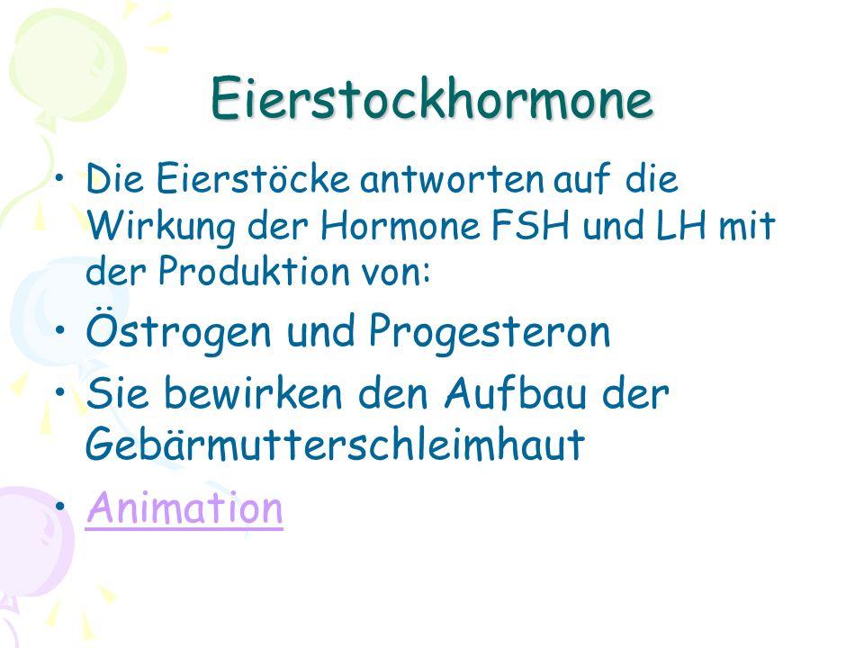 Eierstockhormone Östrogen und Progesteron