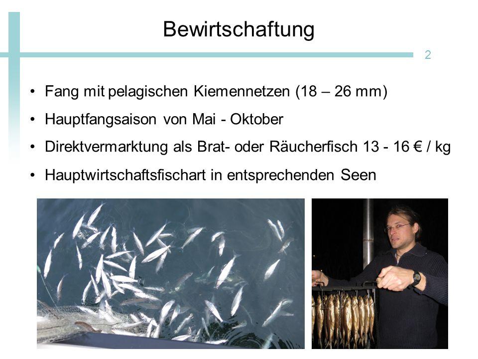 Bewirtschaftung Fang mit pelagischen Kiemennetzen (18 – 26 mm)