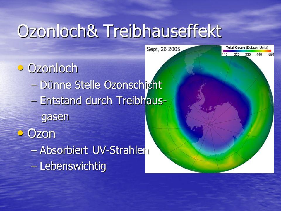 Ozonloch& Treibhauseffekt
