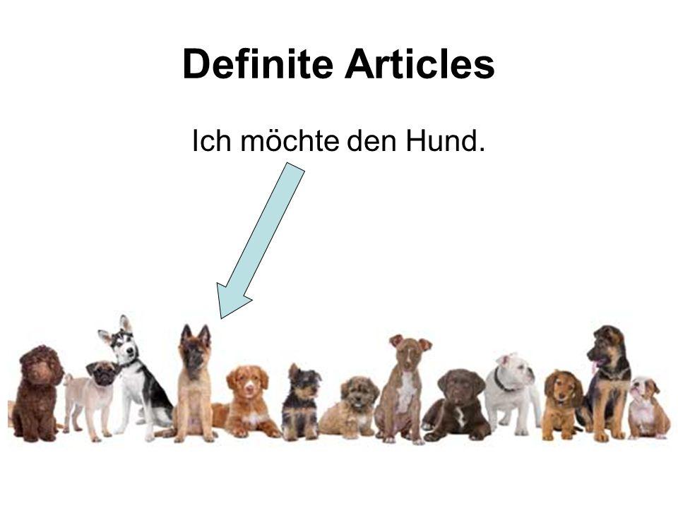 Definite Articles Ich möchte den Hund.