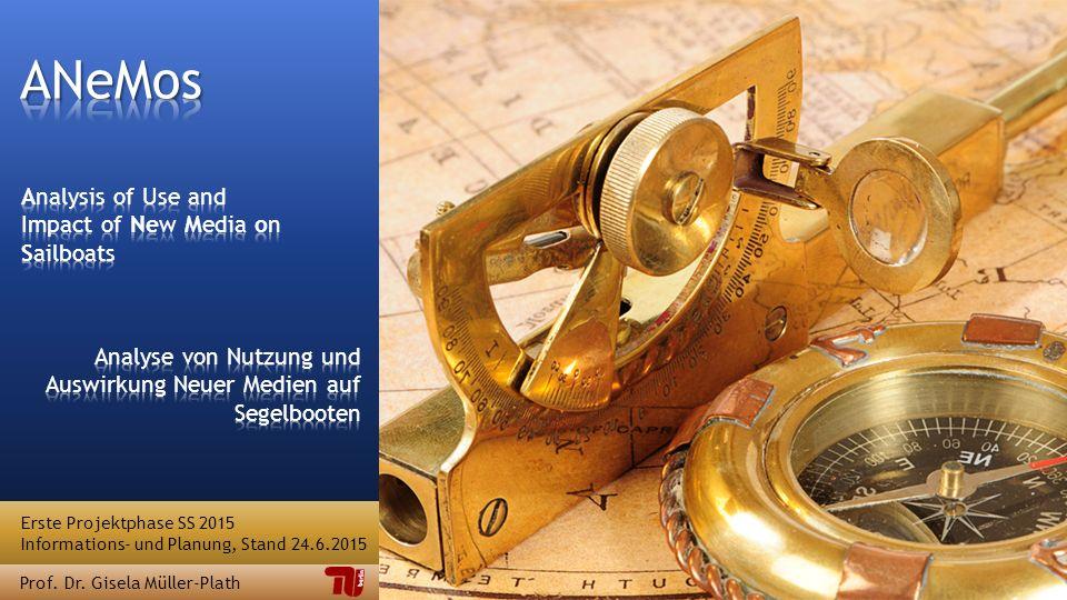 Erste Projektphase SS 2015 Informations- und Planung, Stand 24.6.2015