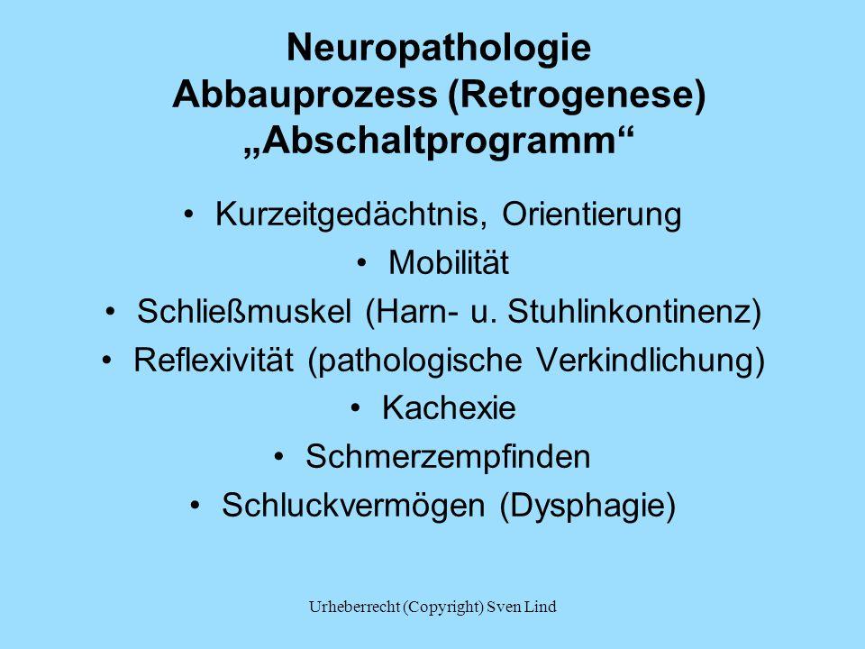 "Neuropathologie Abbauprozess (Retrogenese) ""Abschaltprogramm"