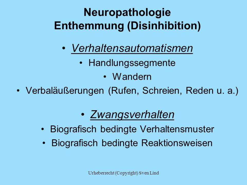 Neuropathologie Enthemmung (Disinhibition)