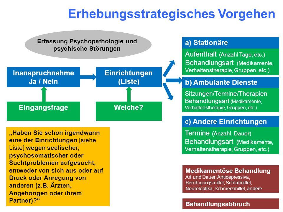 Erhebungsstrategisches Vorgehen