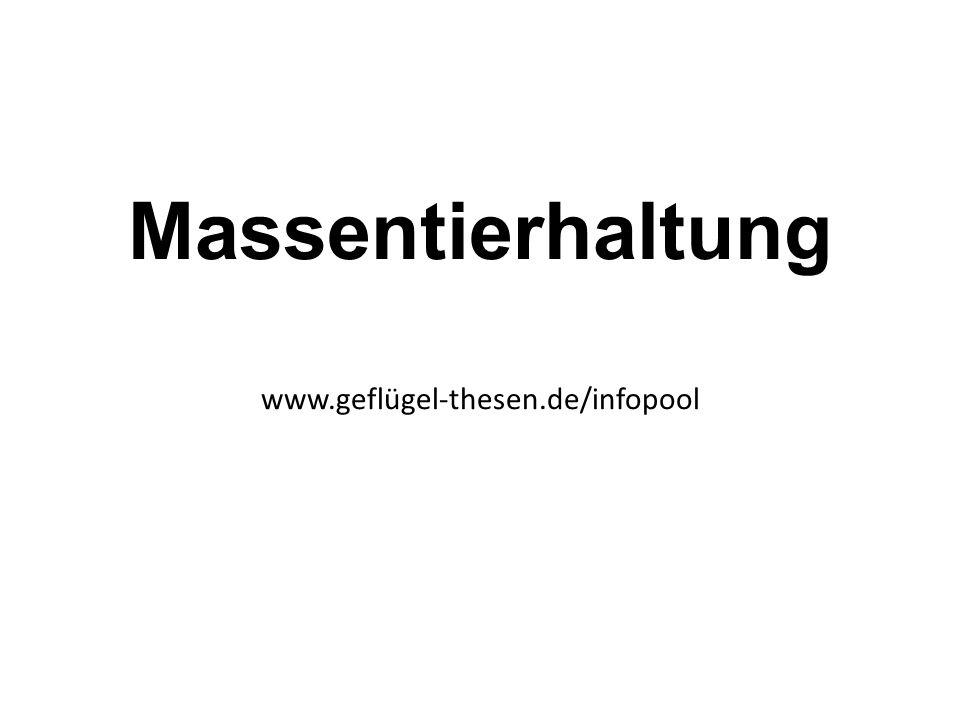 Massentierhaltung www.geflügel-thesen.de/infopool