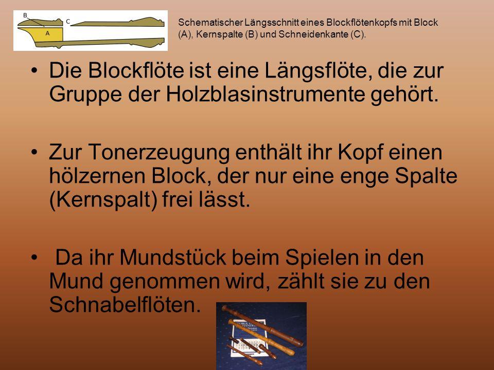 Schematischer Längsschnitt eines Blockflötenkopfs mit Block (A), Kernspalte (B) und Schneidenkante (C).