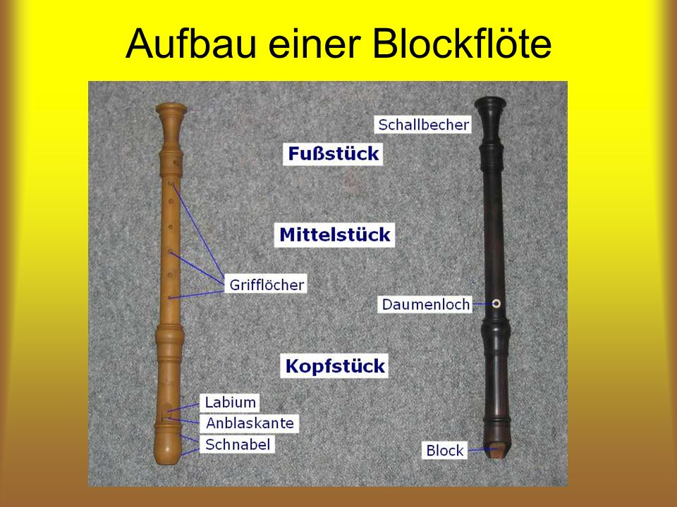 Aufbau einer Blockflöte