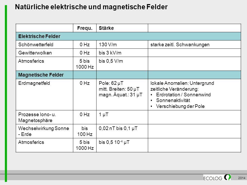 Natürliche elektrische und magnetische Felder