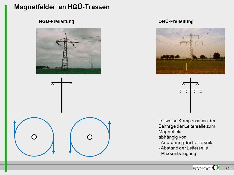 Magnetfelder an HGÜ-Trassen
