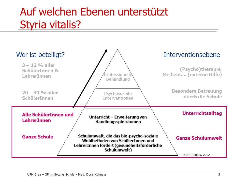 Auf welchen Ebenen unterstützt Styria vitalis
