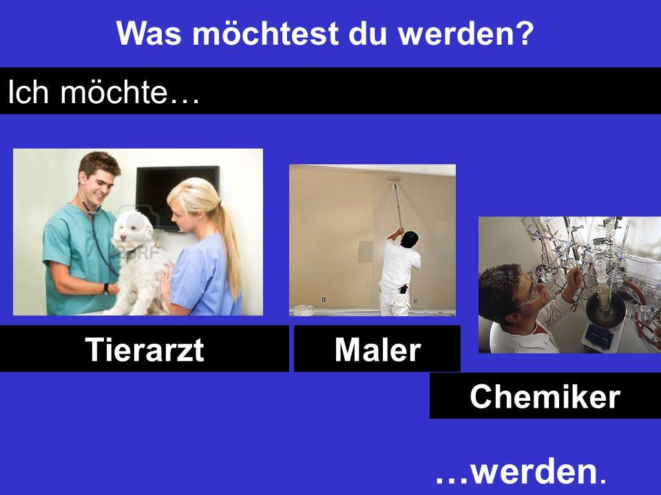 Was möchtest du werden Ich möchte… Tierarzt Maler Chemiker …werden.
