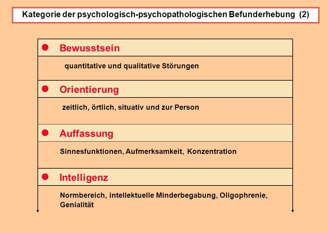 Kategorie der psychologisch-psychopathologischen Befunderhebung (2)