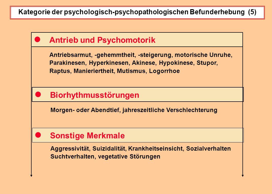 Kategorie der psychologisch-psychopathologischen Befunderhebung (5)