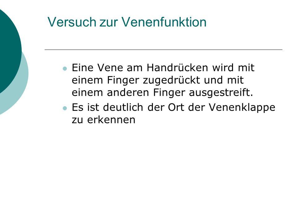 Charmant Obere Extremitäten Venenanatomie Fotos - Anatomie Von ...