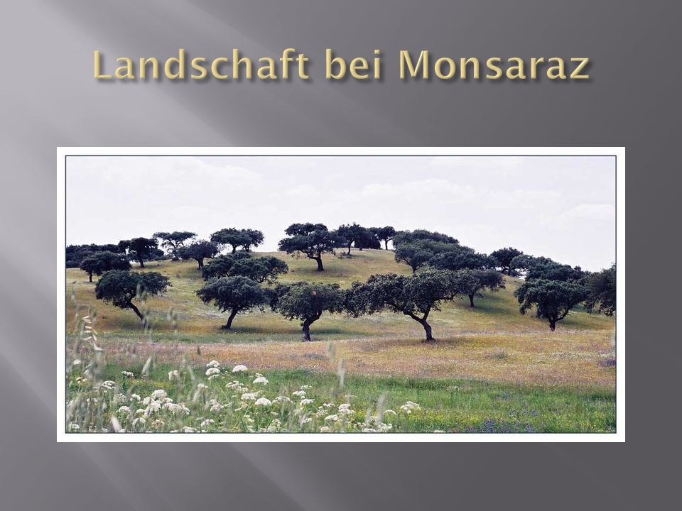 Landschaft bei Monsaraz