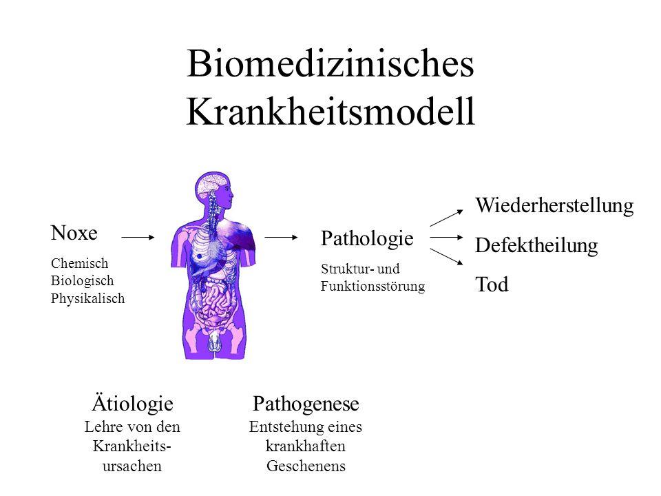 Biomedizinisches Krankheitsmodell