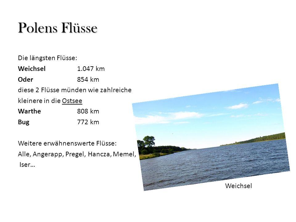 Polens Flüsse