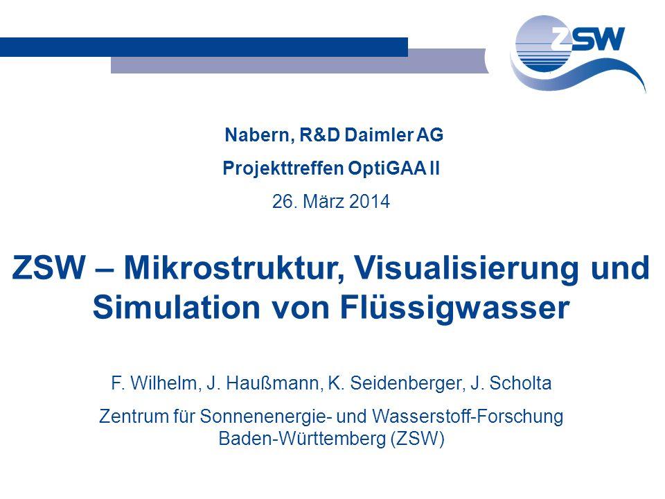 ZSW – Mikrostruktur, Visualisierung und Simulation von Flüssigwasser