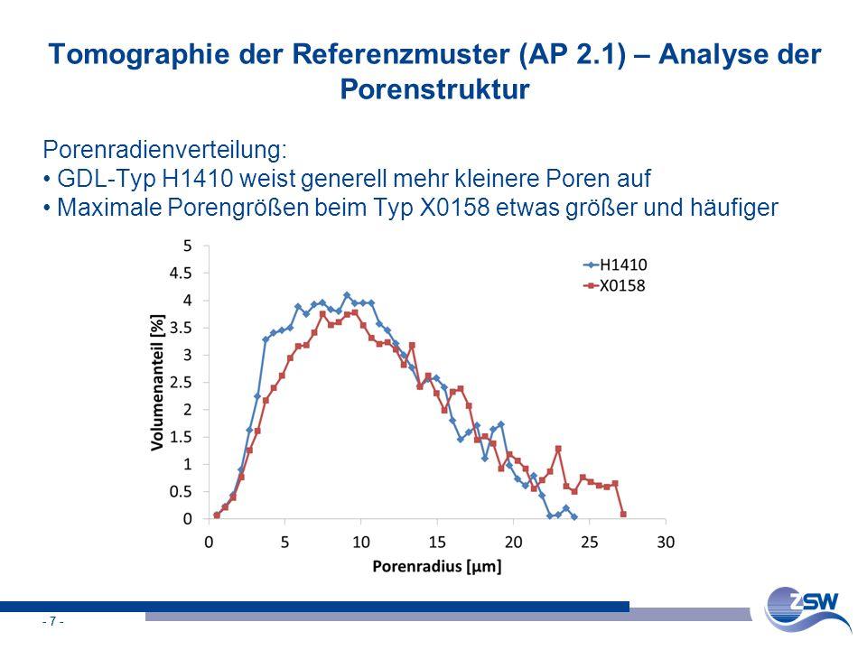 Tomographie der Referenzmuster (AP 2.1) – Analyse der Porenstruktur