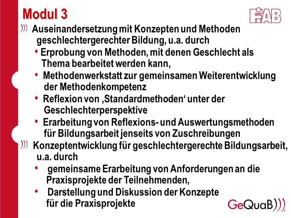 Modul 3 Auseinandersetzung mit Konzepten und Methoden geschlechtergerechter Bildung, u.a. durch.