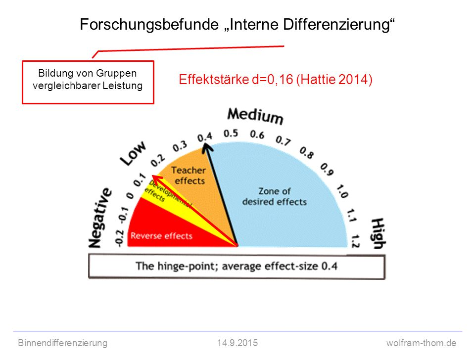 "Forschungsbefunde ""Interne Differenzierung"