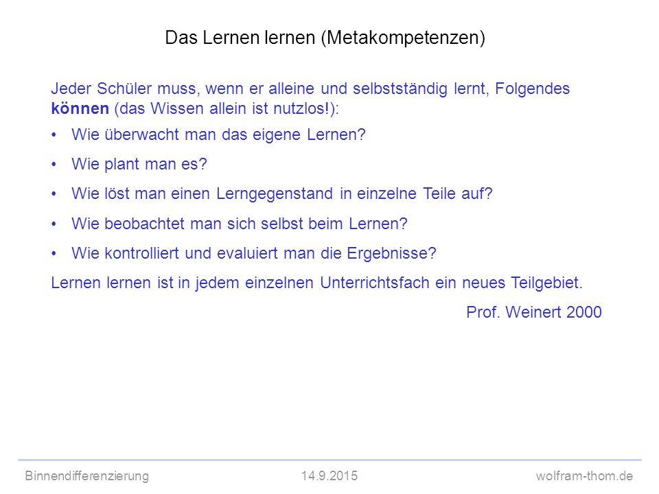 Das Lernen lernen (Metakompetenzen)