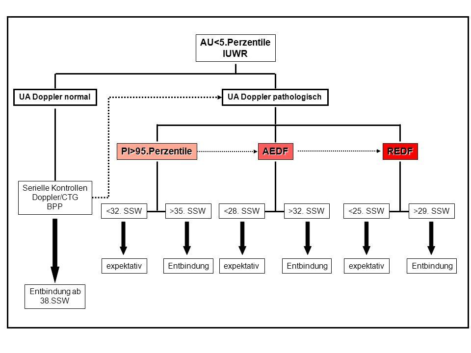 UA Doppler pathologisch