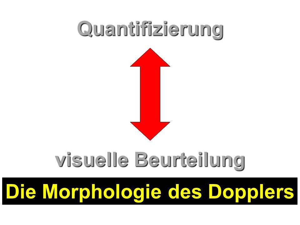 Die Morphologie des Dopplers