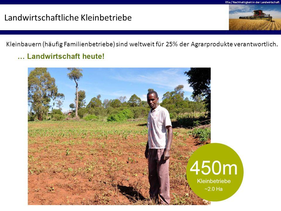 Landwirtschaftliche Kleinbetriebe
