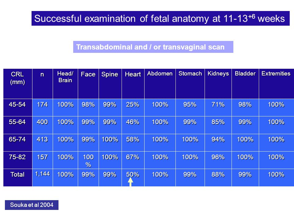 Successful examination of fetal anatomy at weeks