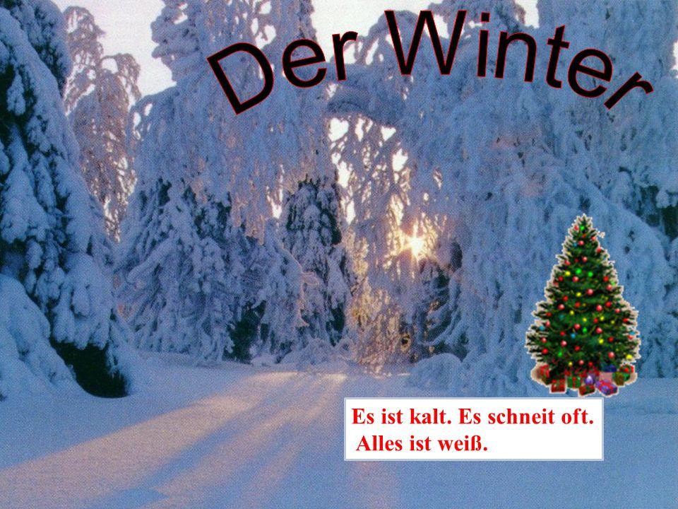 Der Winter Es ist kalt. Es schneit oft. Alles ist weiß.