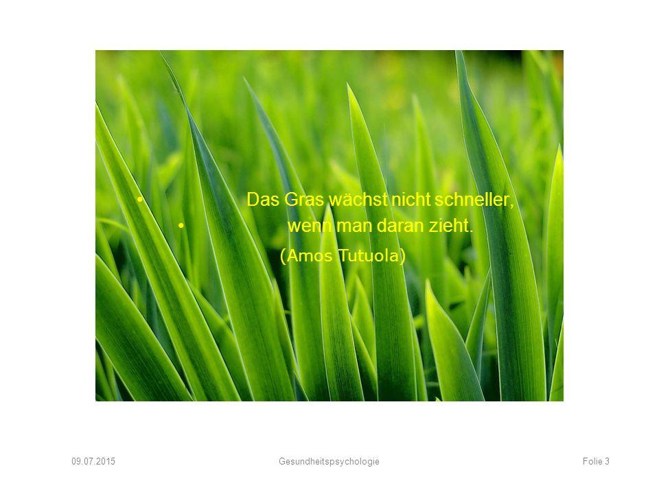 Das Gras wächst nicht schneller, wenn man daran zieht.