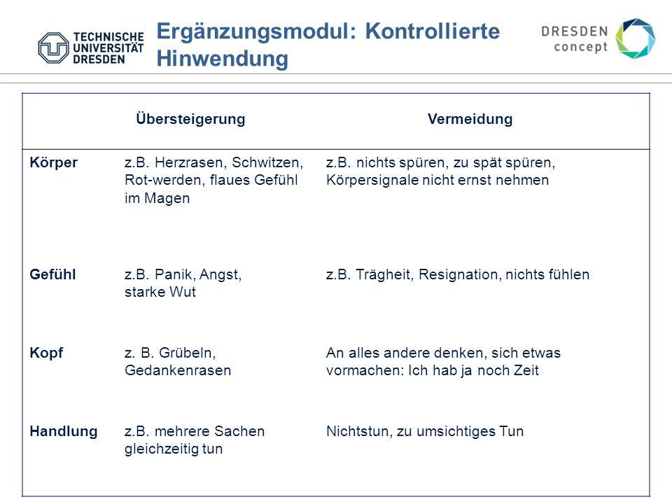 Ergänzungsmodul: Kontrollierte Hinwendung