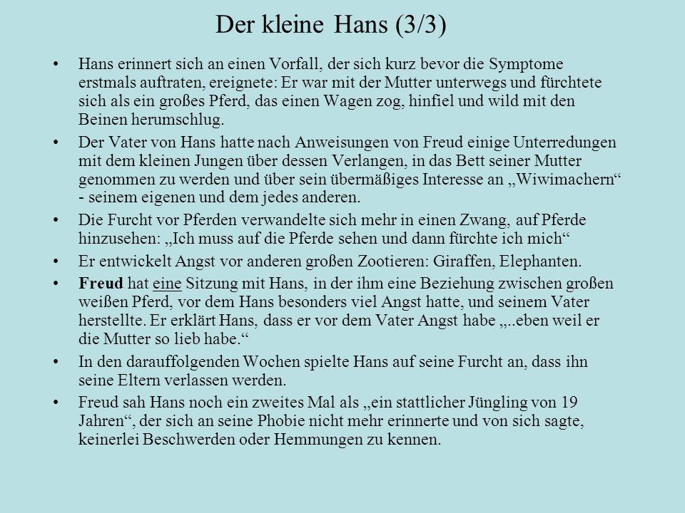 Der kleine Hans (3/3)