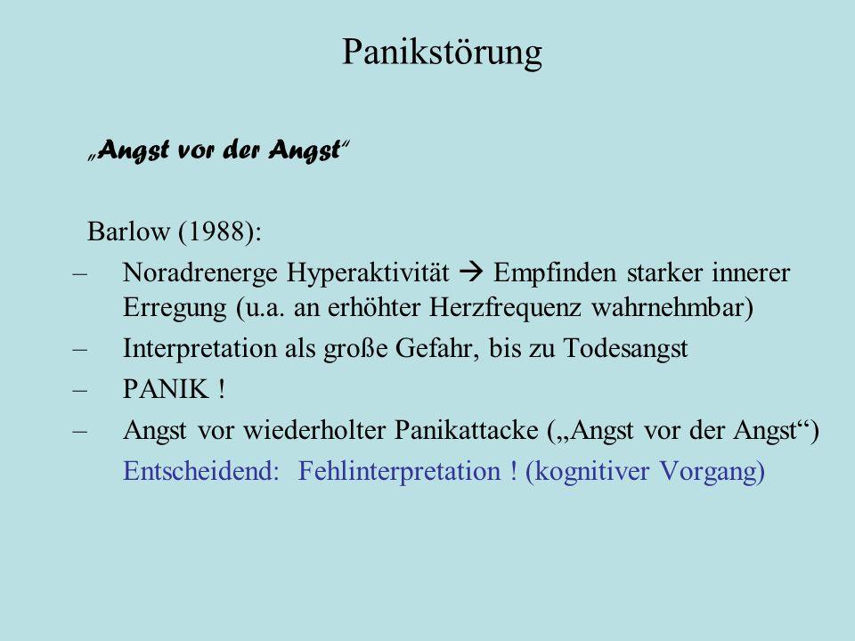 """Panikstörung Psychologische Theorien """"Angst vor der Angst"""