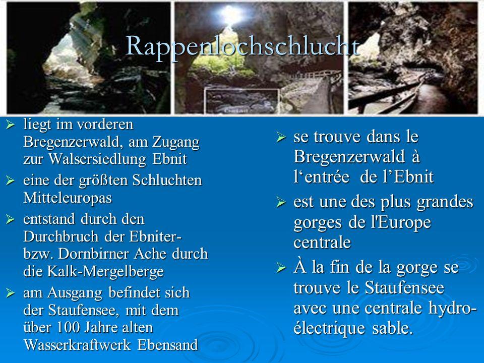 Rappenlochschlucht liegt im vorderen Bregenzerwald, am Zugang zur Walsersiedlung Ebnit. eine der größten Schluchten Mitteleuropas.