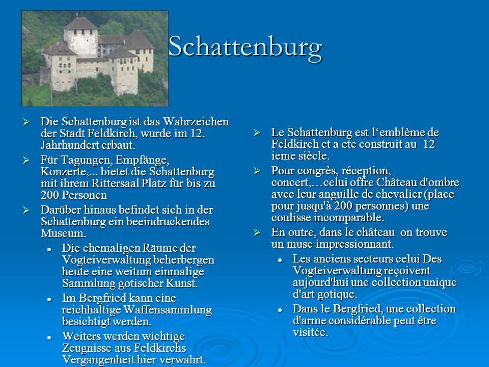 Schattenburg Die Schattenburg ist das Wahrzeichen der Stadt Feldkirch, wurde im 12. Jahrhundert erbaut.