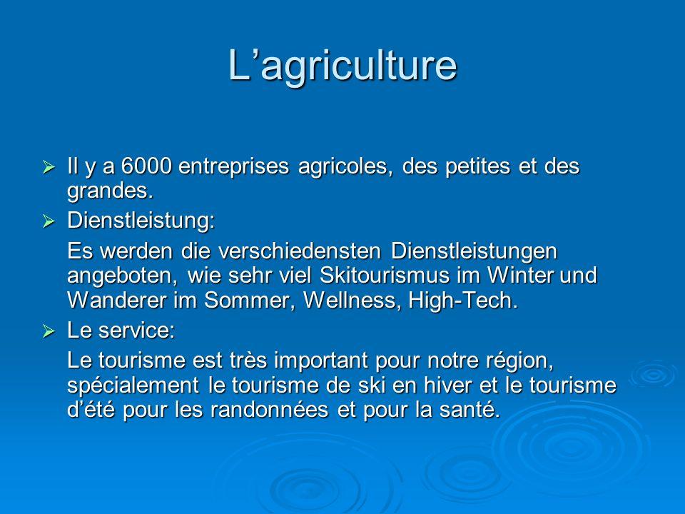 L'agriculture Il y a 6000 entreprises agricoles, des petites et des grandes. Dienstleistung: