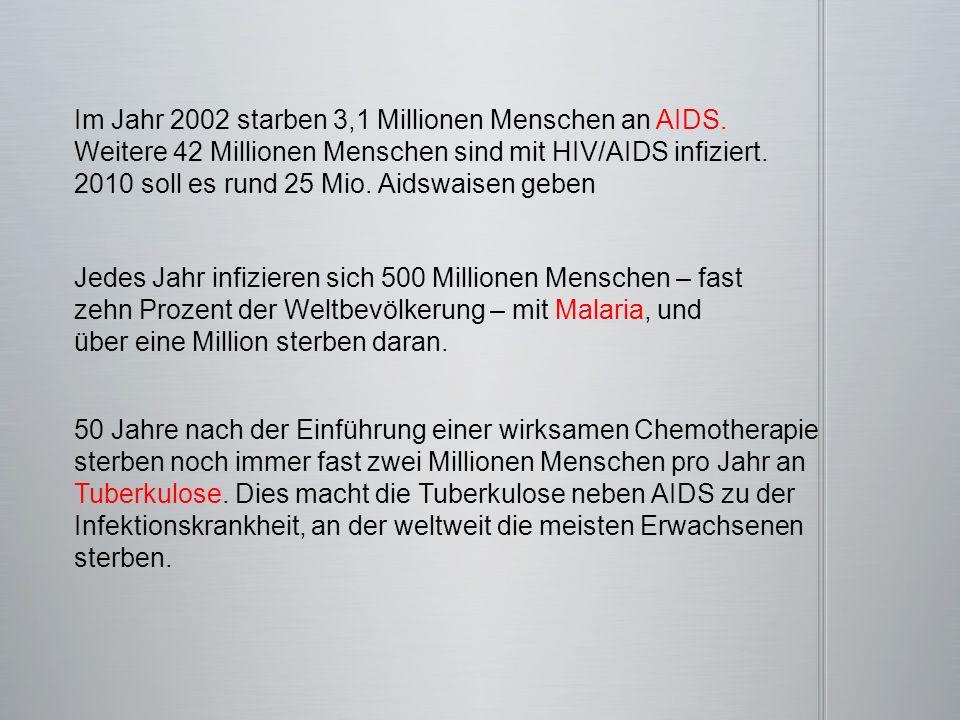 Im Jahr 2002 starben 3,1 Millionen Menschen an AIDS.